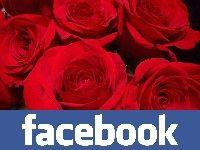 Winamax Poker : Tournoi Facebook spécial Saint-Valentin
