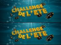 Bwin Poker poursuit son Challenge de l'Eté 2013